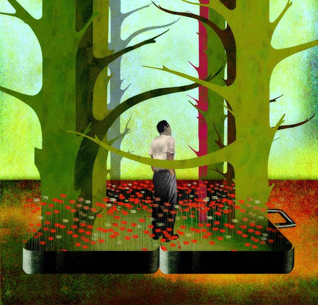 Nature Traveler illustration by Brian Stauffer